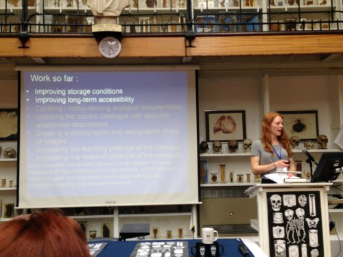 Pia Edqvist presenting at Barts Pathology Museum on the subject of the human remains in the Petrie Museum collections