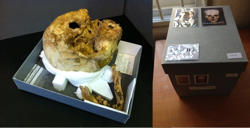 On left, skull of Inti, Army General securely mounted and housed. Right, box containing skull of Inti